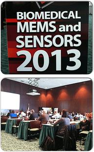 2013 Biomems and sensors